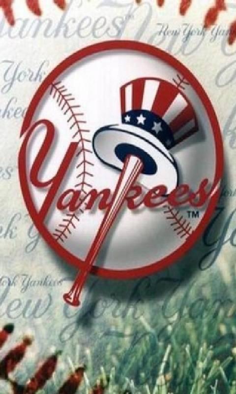 N Y Yankees