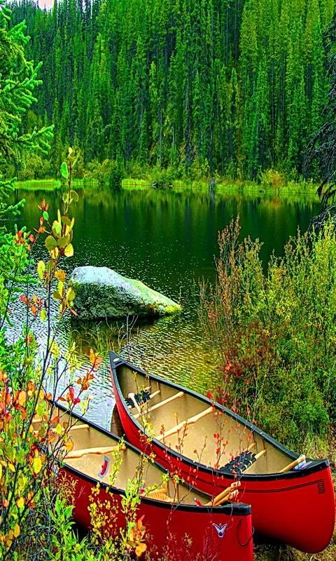 Boats On Lakeshore