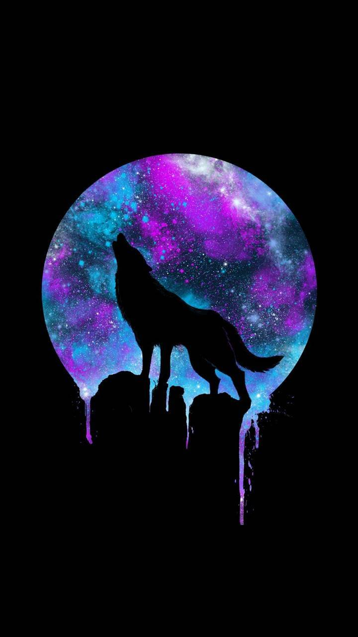 Wolf Moon Wallpaper By Myboys3l365 36 Free On Zedge