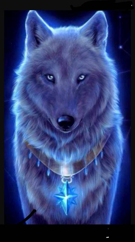 Galaxy Wolf Wallpapers Free By Zedge