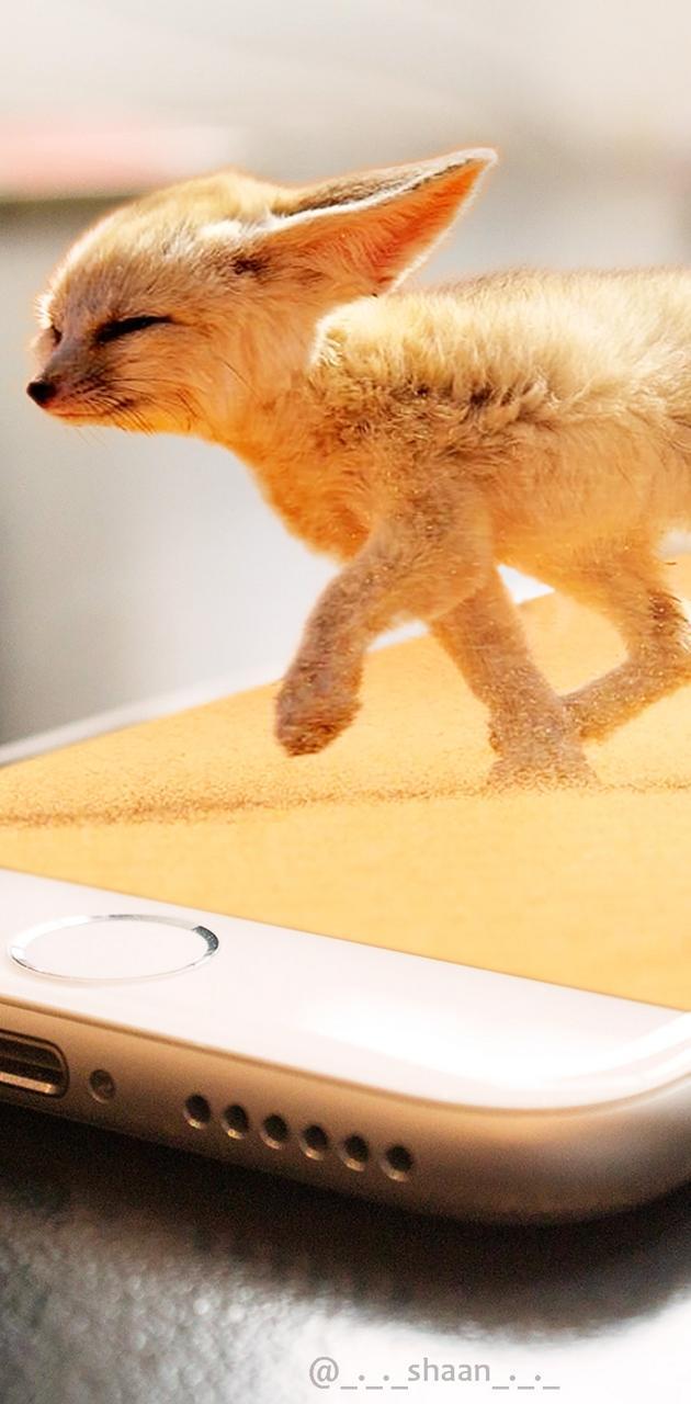 Iphone Desert Fox
