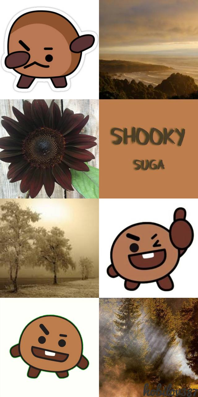 BTS BT21 Shooky
