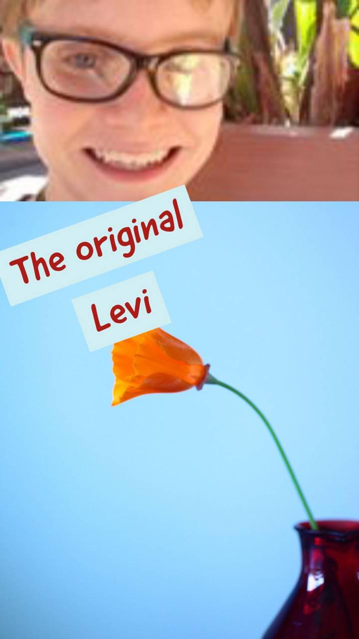 The original Levi