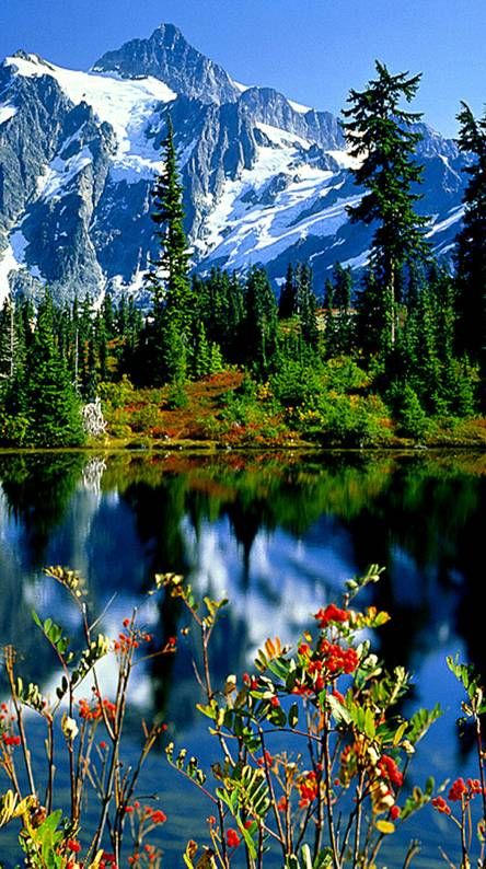 Beautiful Nature Wallpapers Free By Zedge