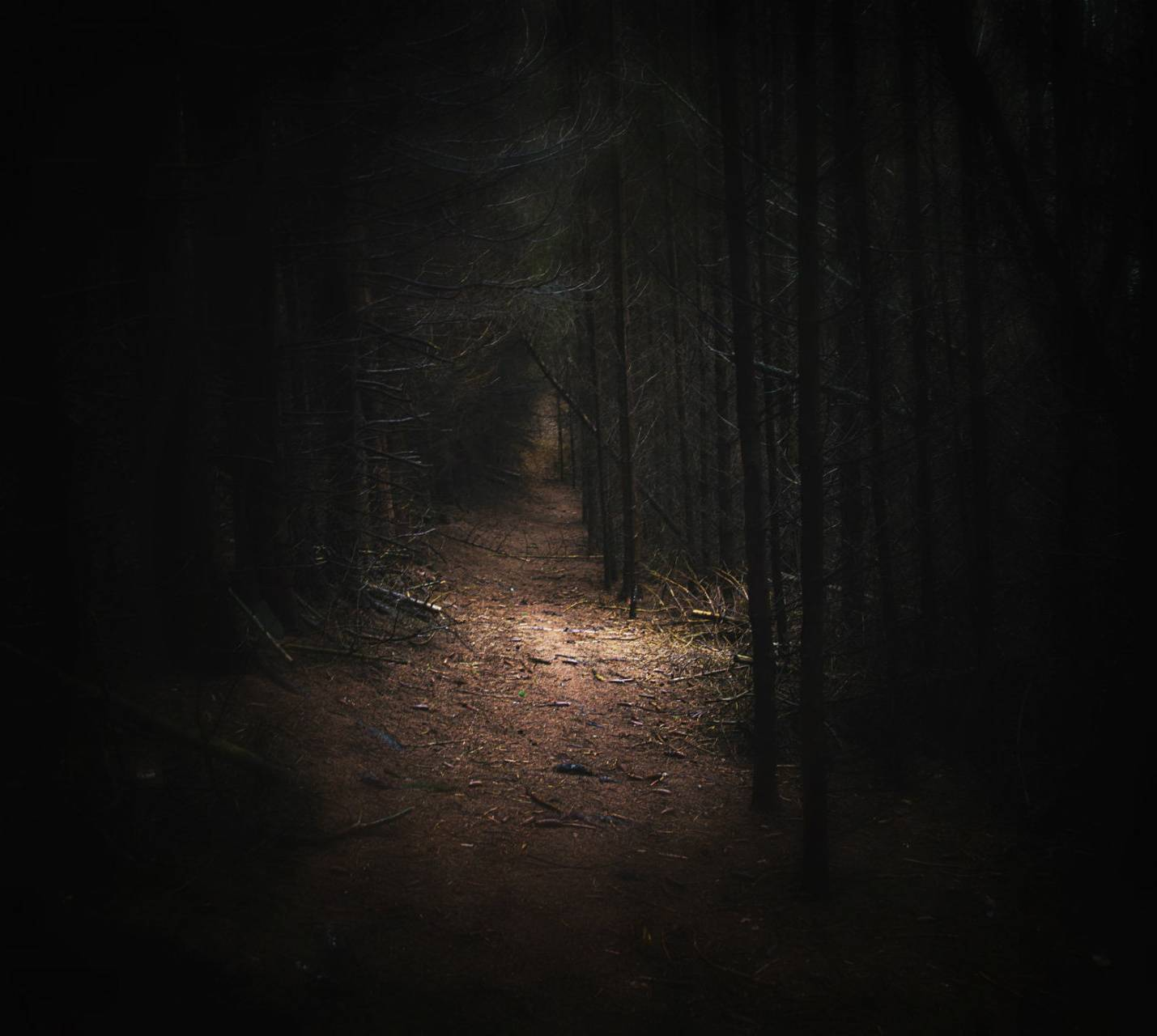 a scary path