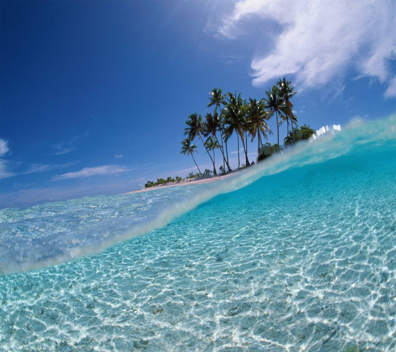 perus northern beaches died -