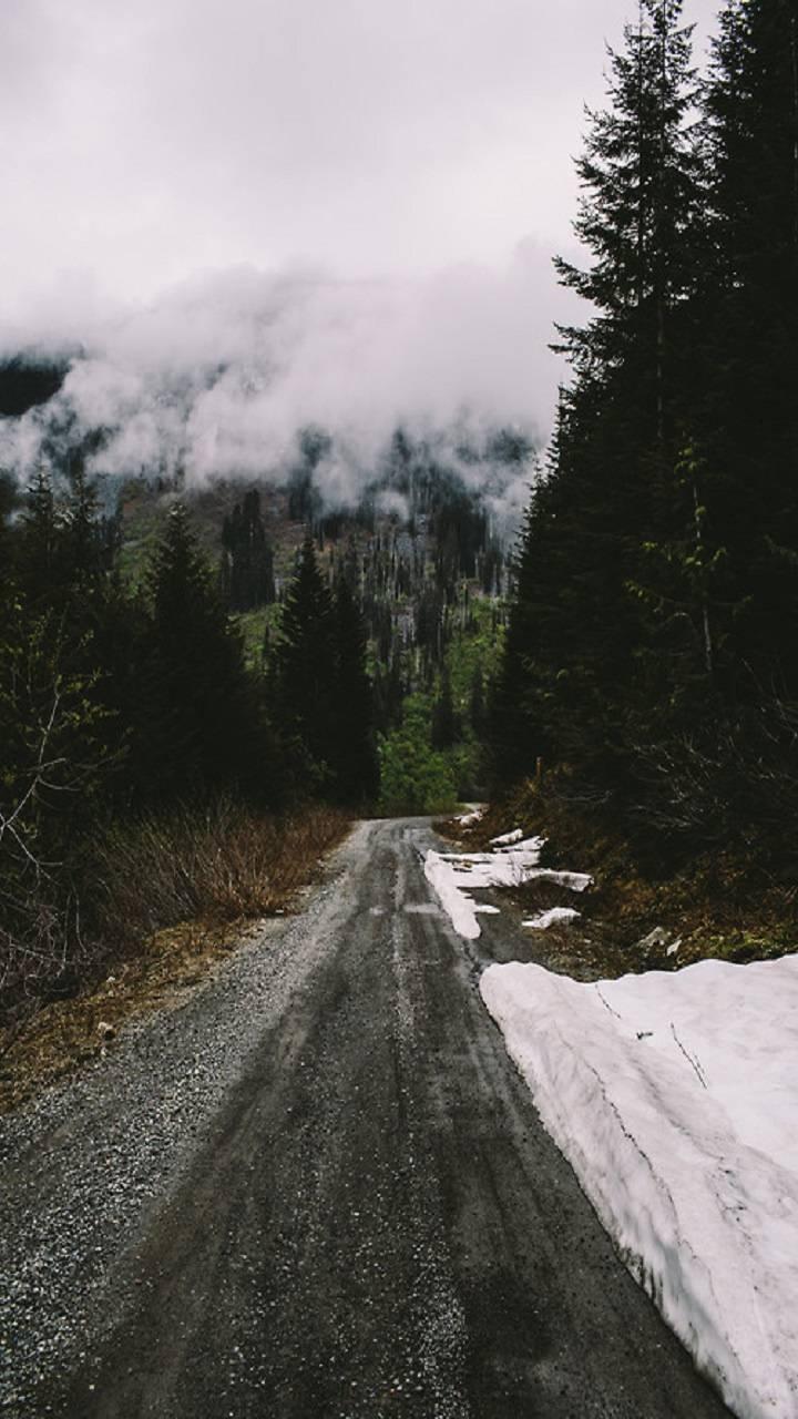 road green