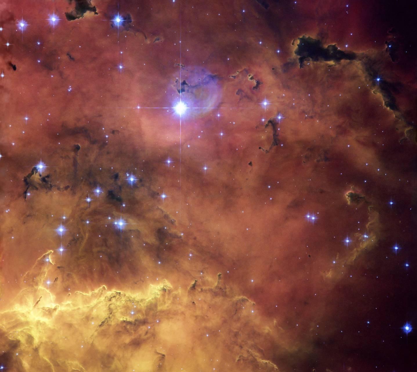 Cosmos 10