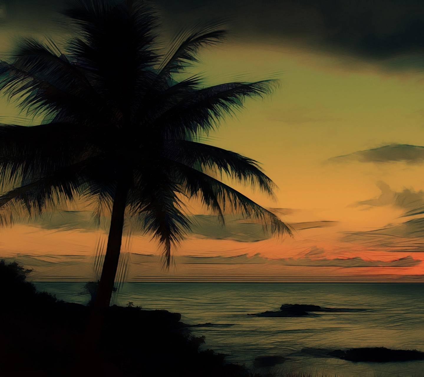 Palm Tree Near Ocean