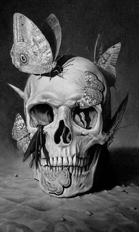 bf on skull