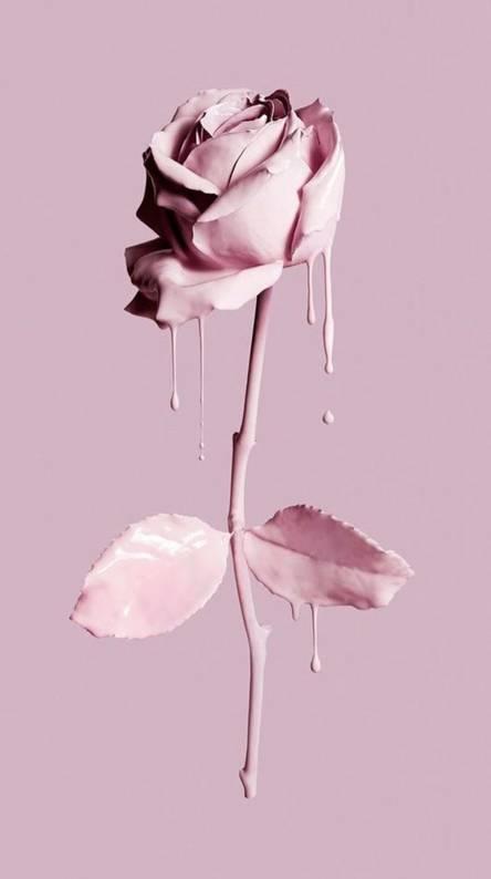 pink pastel petal