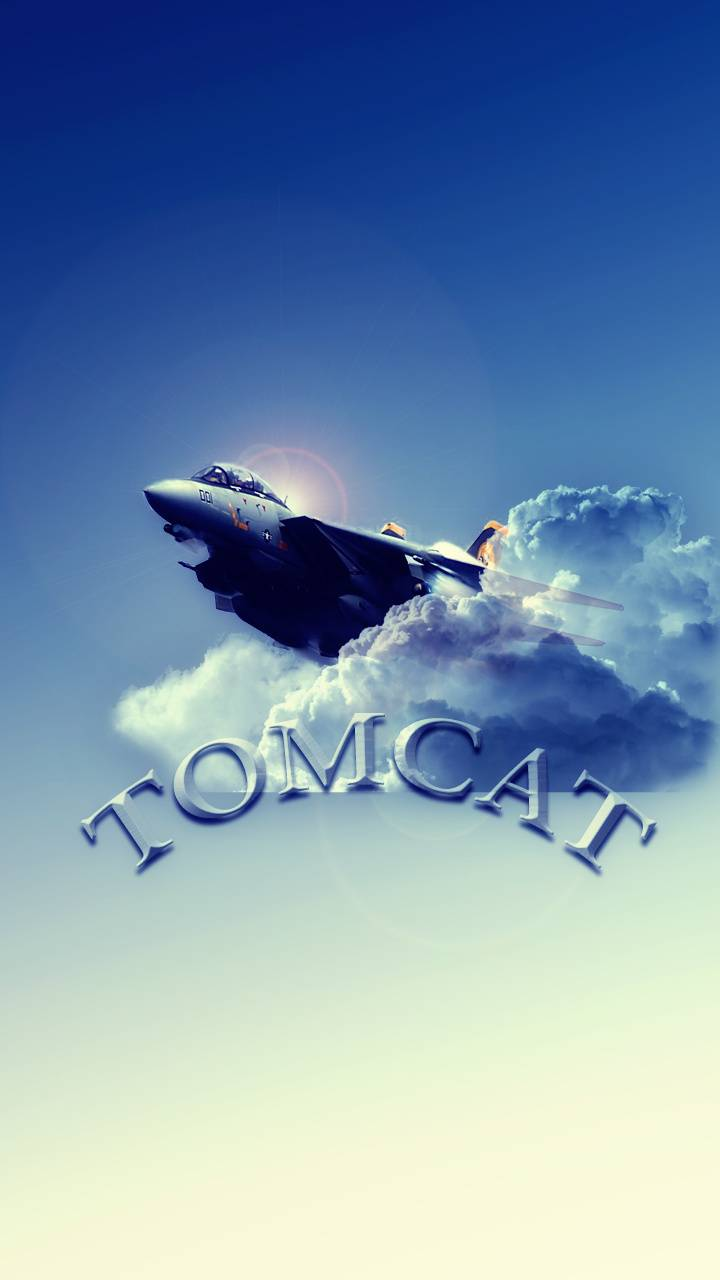 F 14 Tomcat Wallpaper By Tbird57 1a Free On Zedge