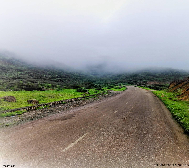Path Green