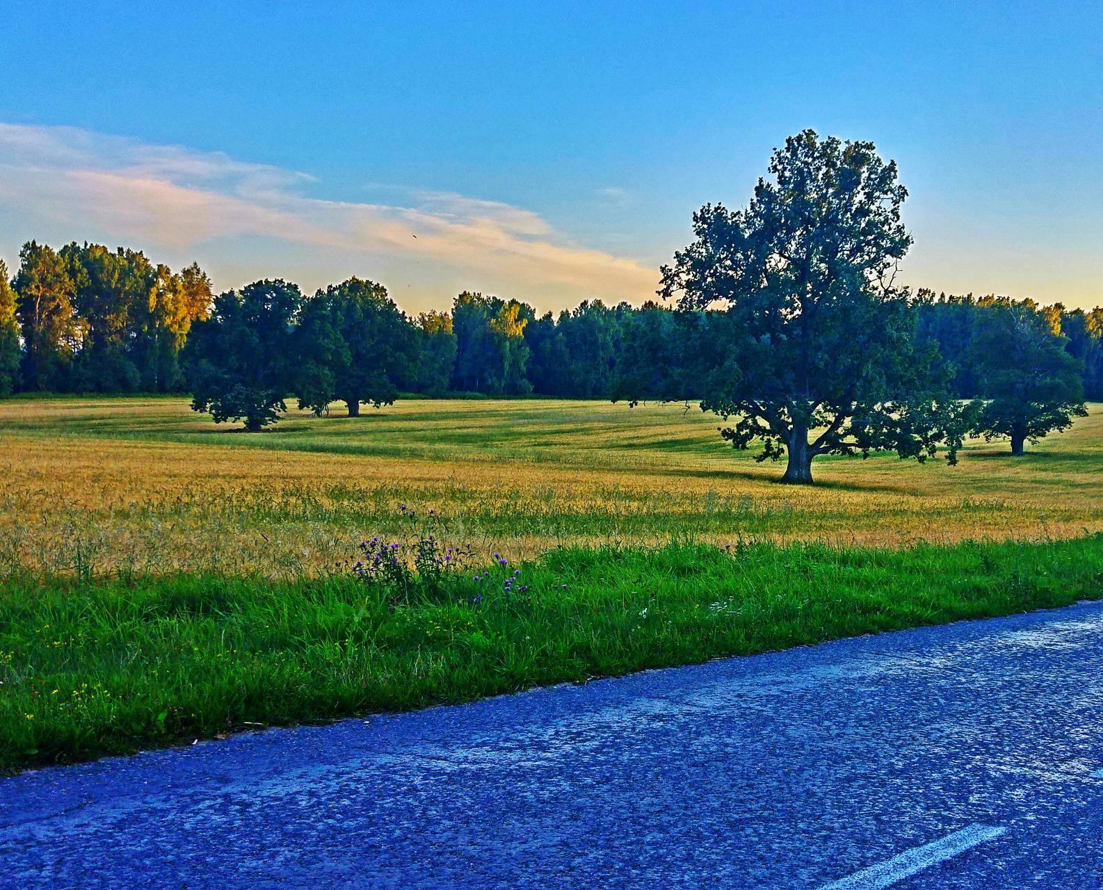belarus country road