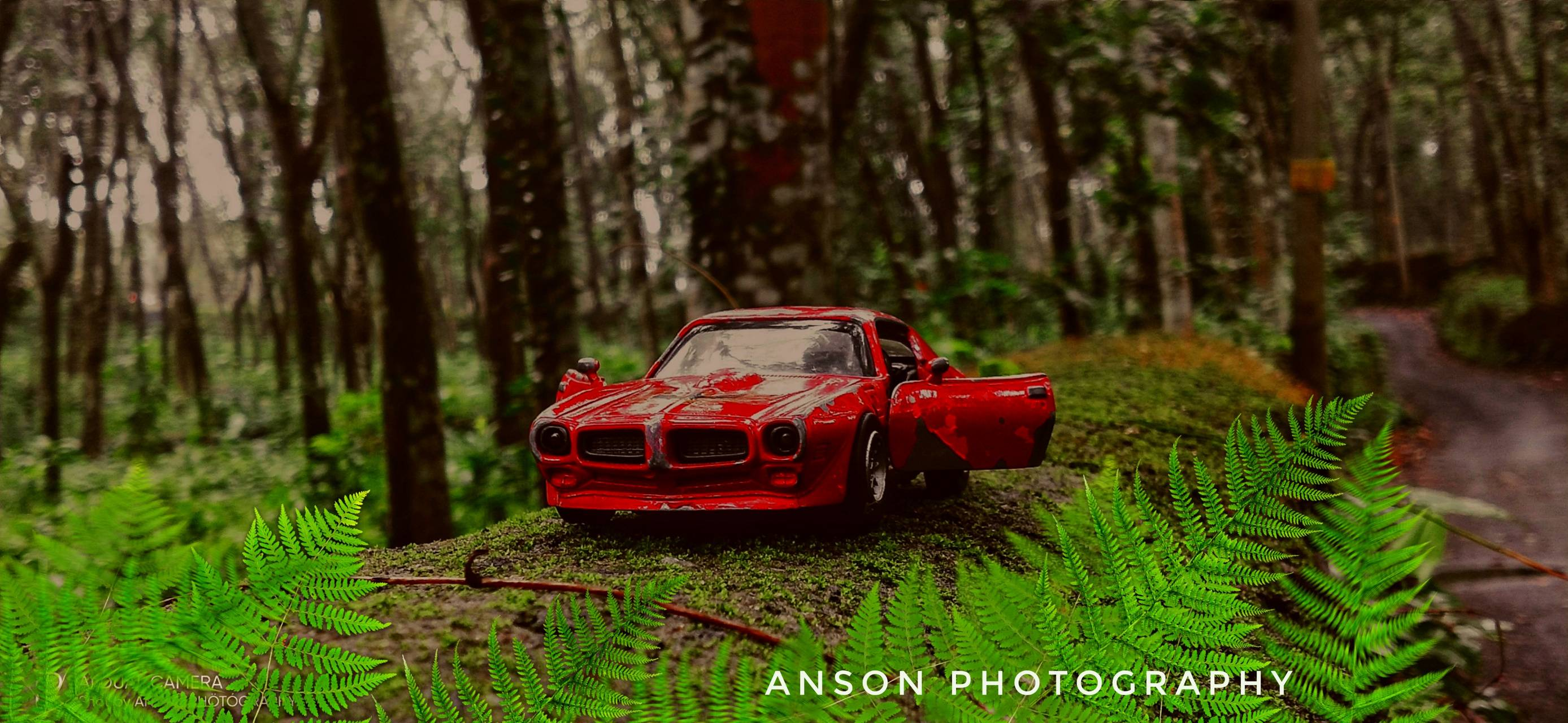 Toys photography