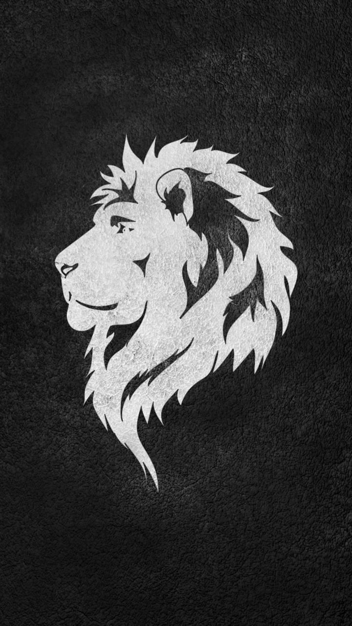 Lion Wallpaper By 199916 7b Free On Zedge