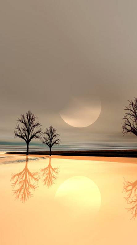 Animated Nature