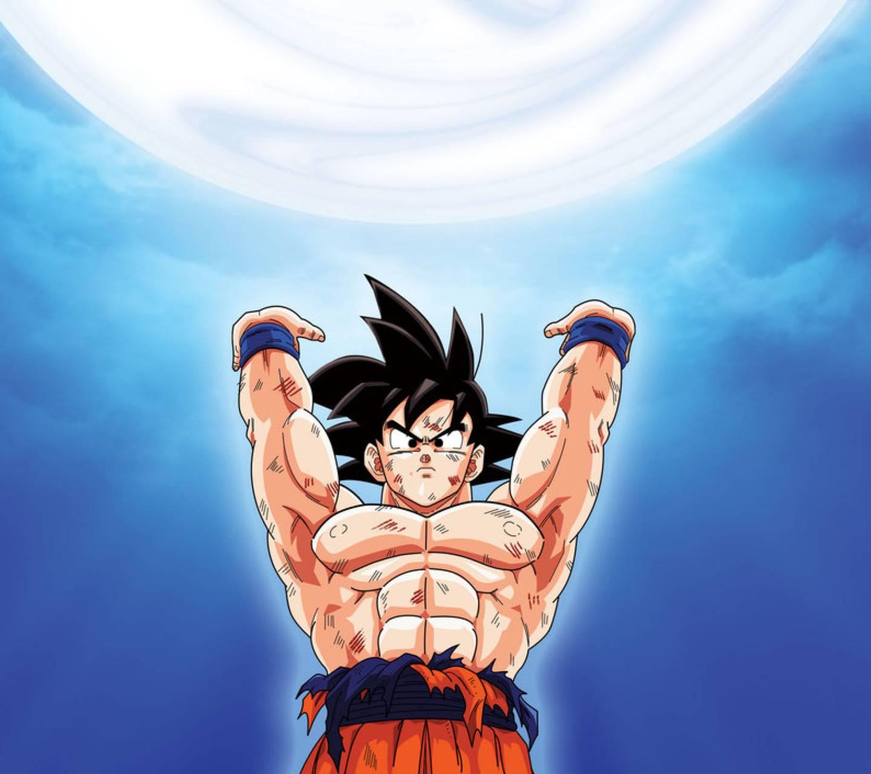 Goku13