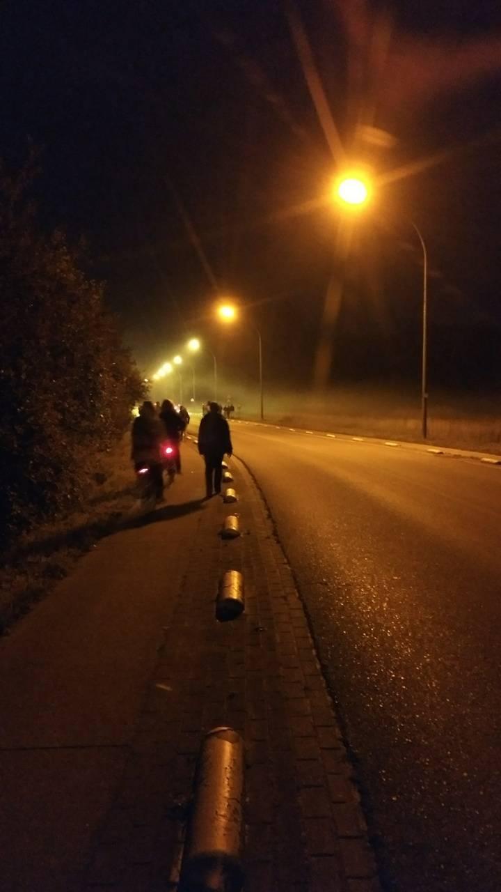 Belgian mist