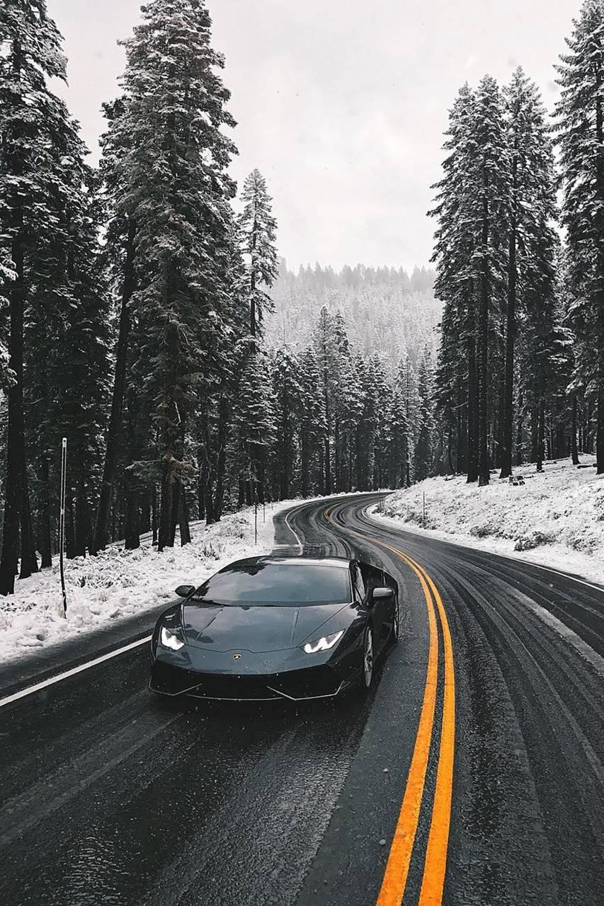 lamborghini in snown