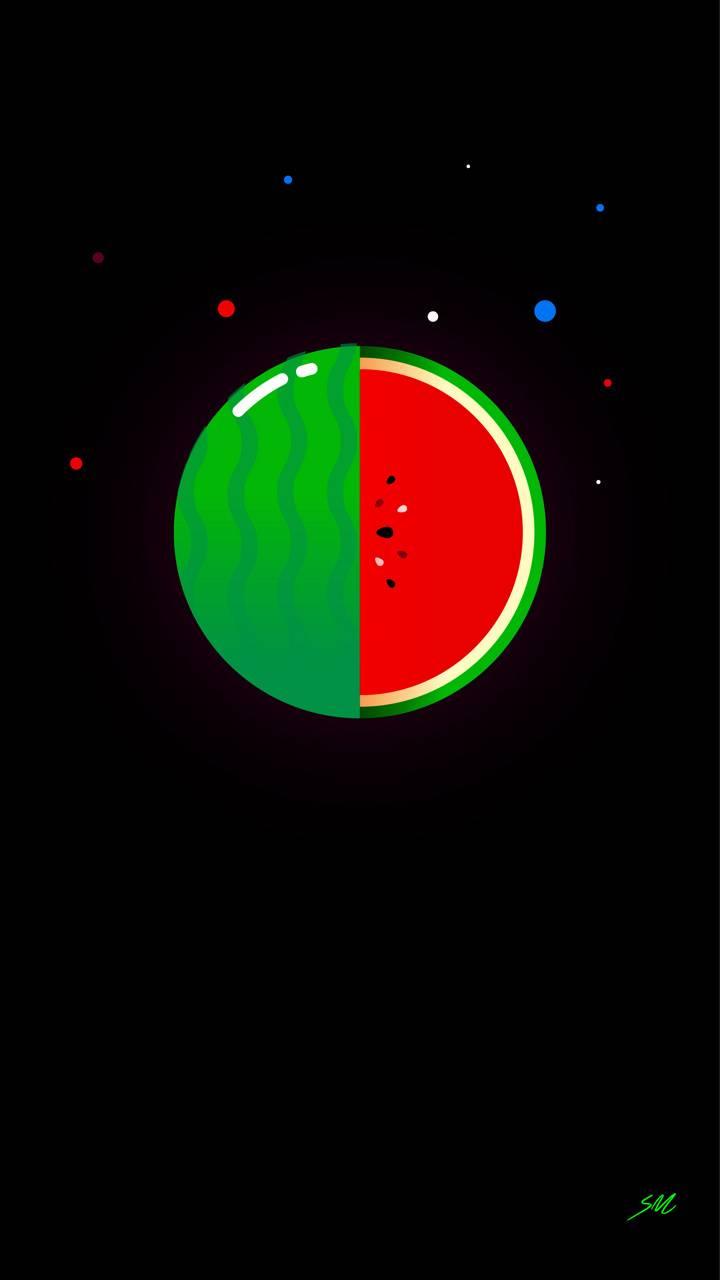 Vectormelon