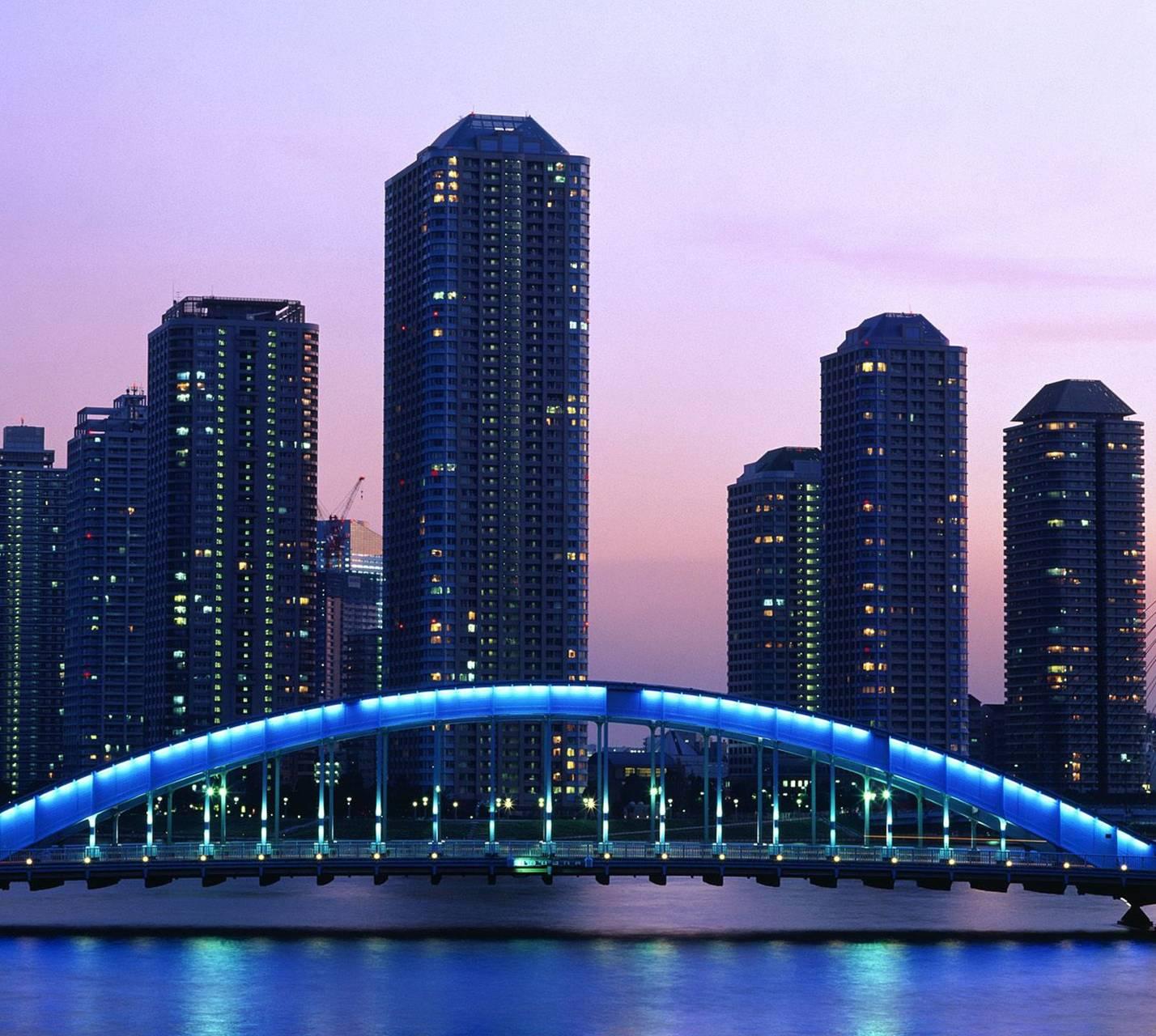 Nice Bridge Japan