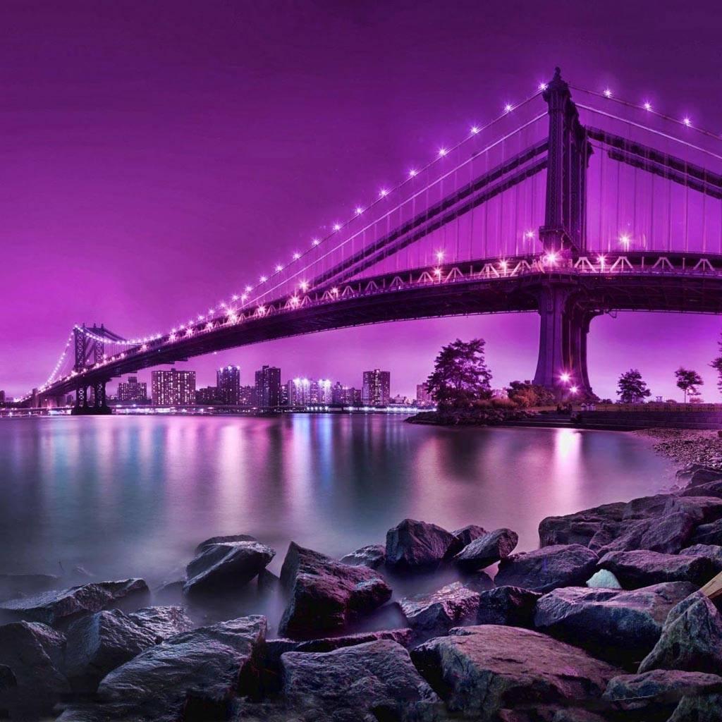 Purple Lighted Bridg