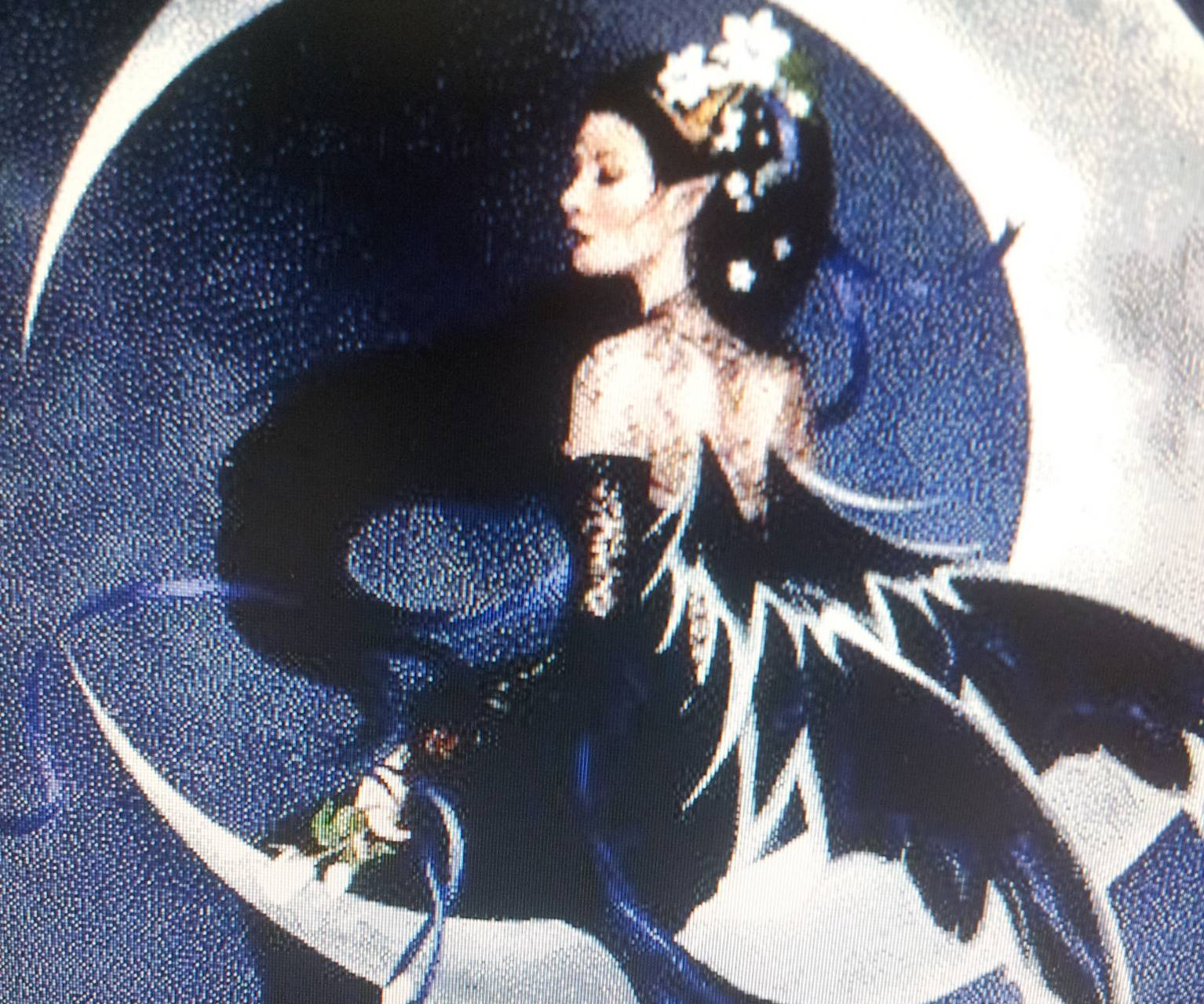 Fairy Lady On Moon