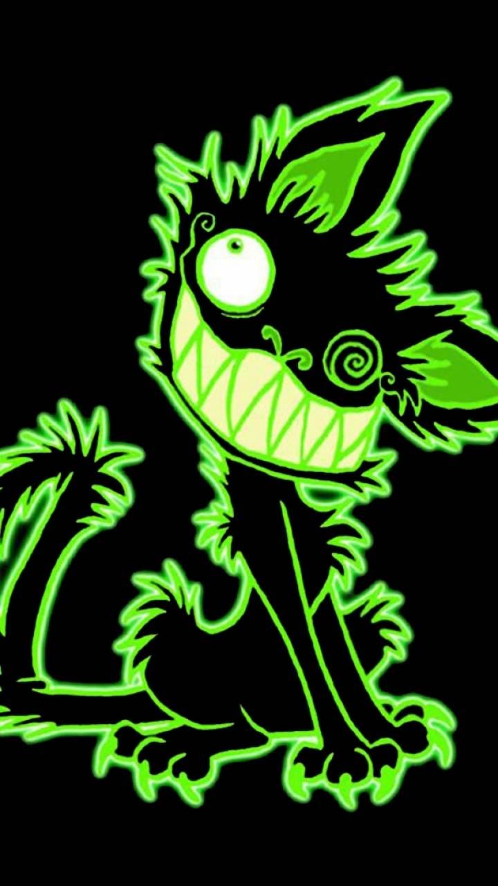 crazy cat green