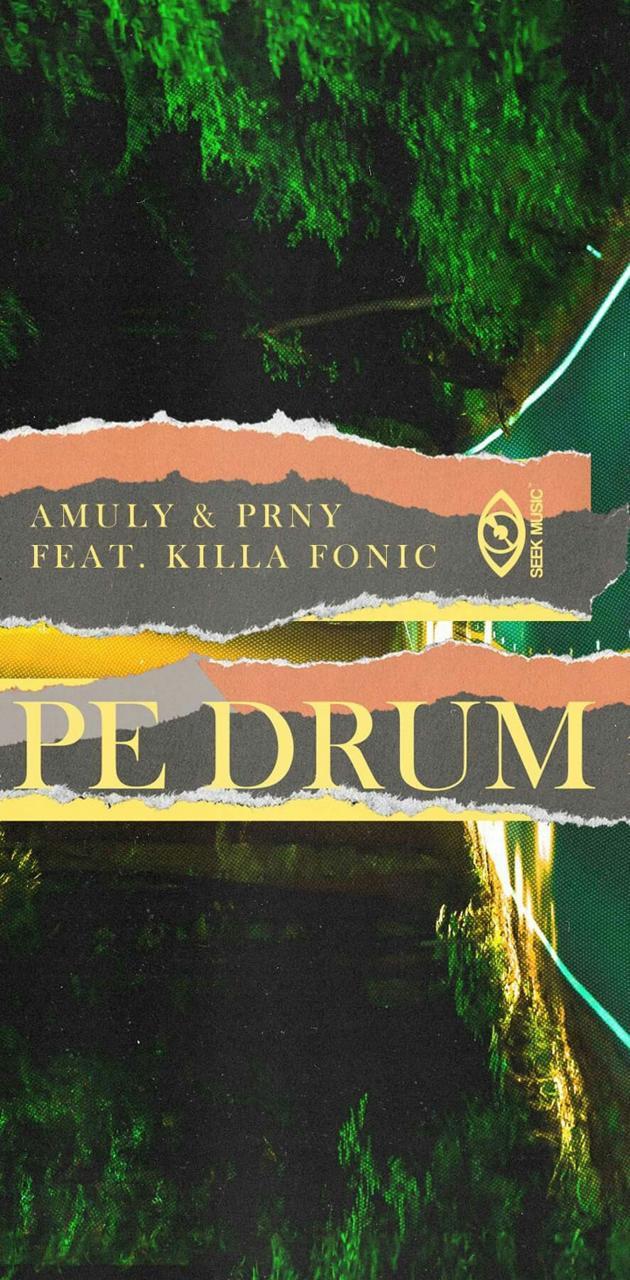 Amuly Pe Drum