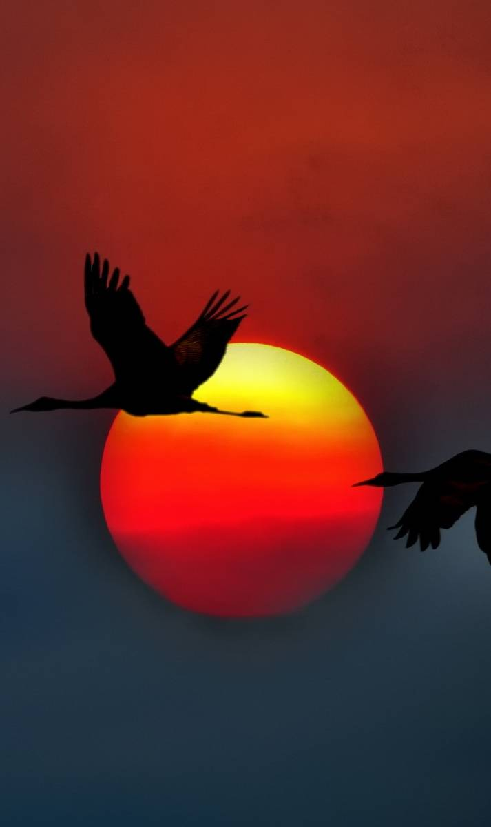 USA sunset