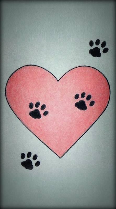 Heart Paw Prints