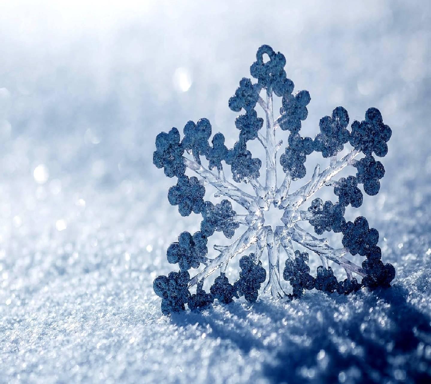flakes snow