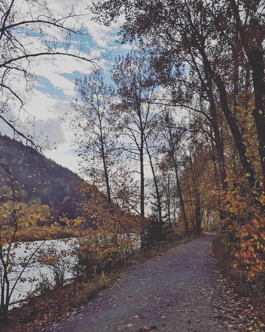 Trailwalking