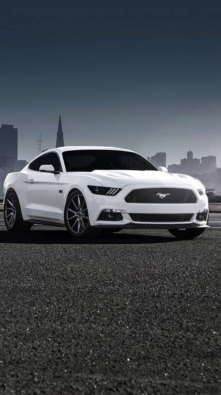 Mustang White