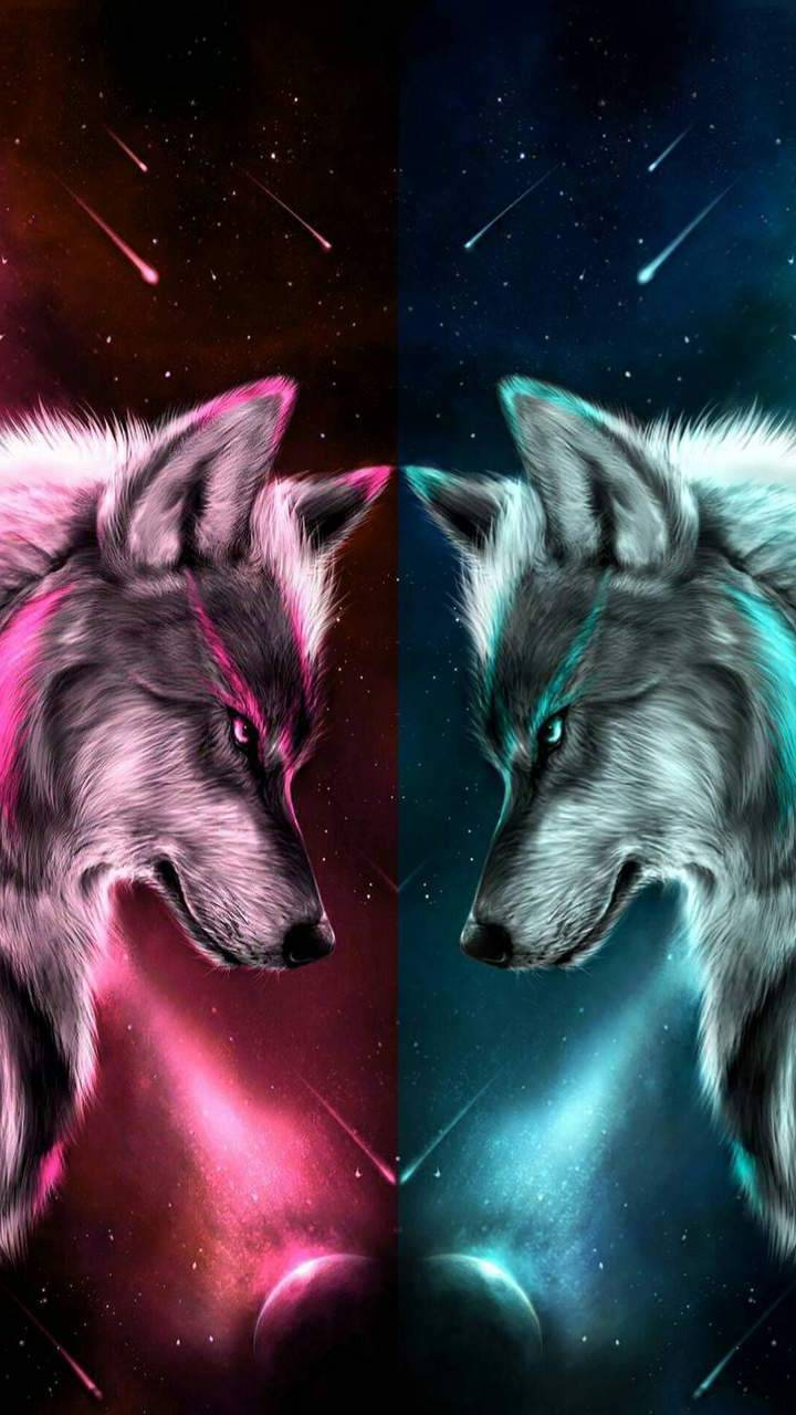 Two Wolves Wallpaper By Thehatter2 7b Free On Zedge