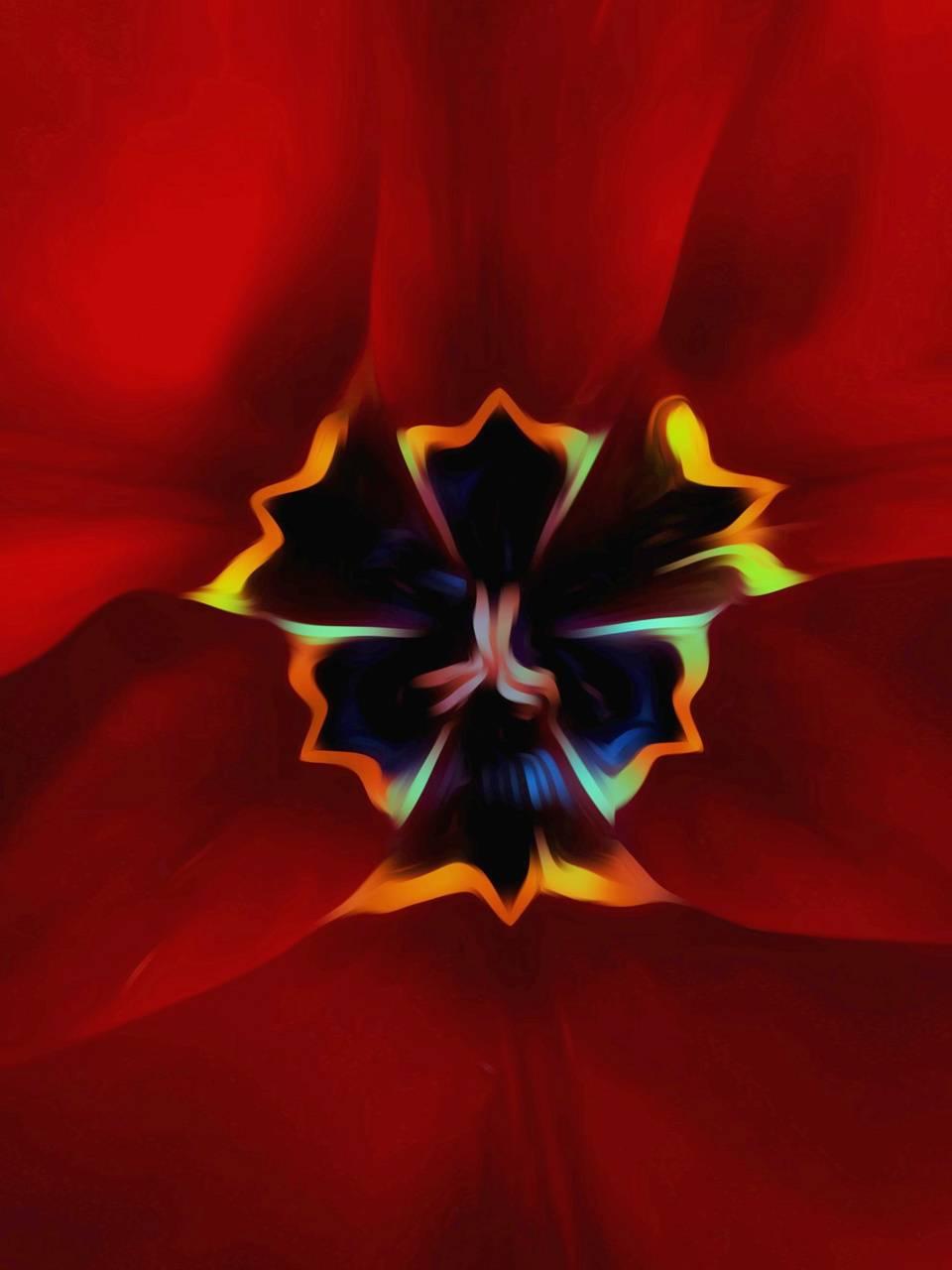 Red flower1 side