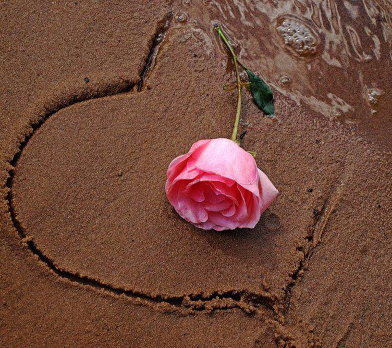 Картинка роза сердце и песок