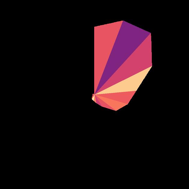 Xiaomi Crystal