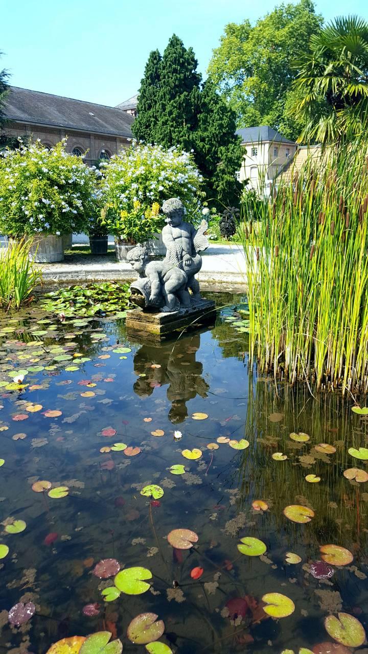 Baby Stone Pond