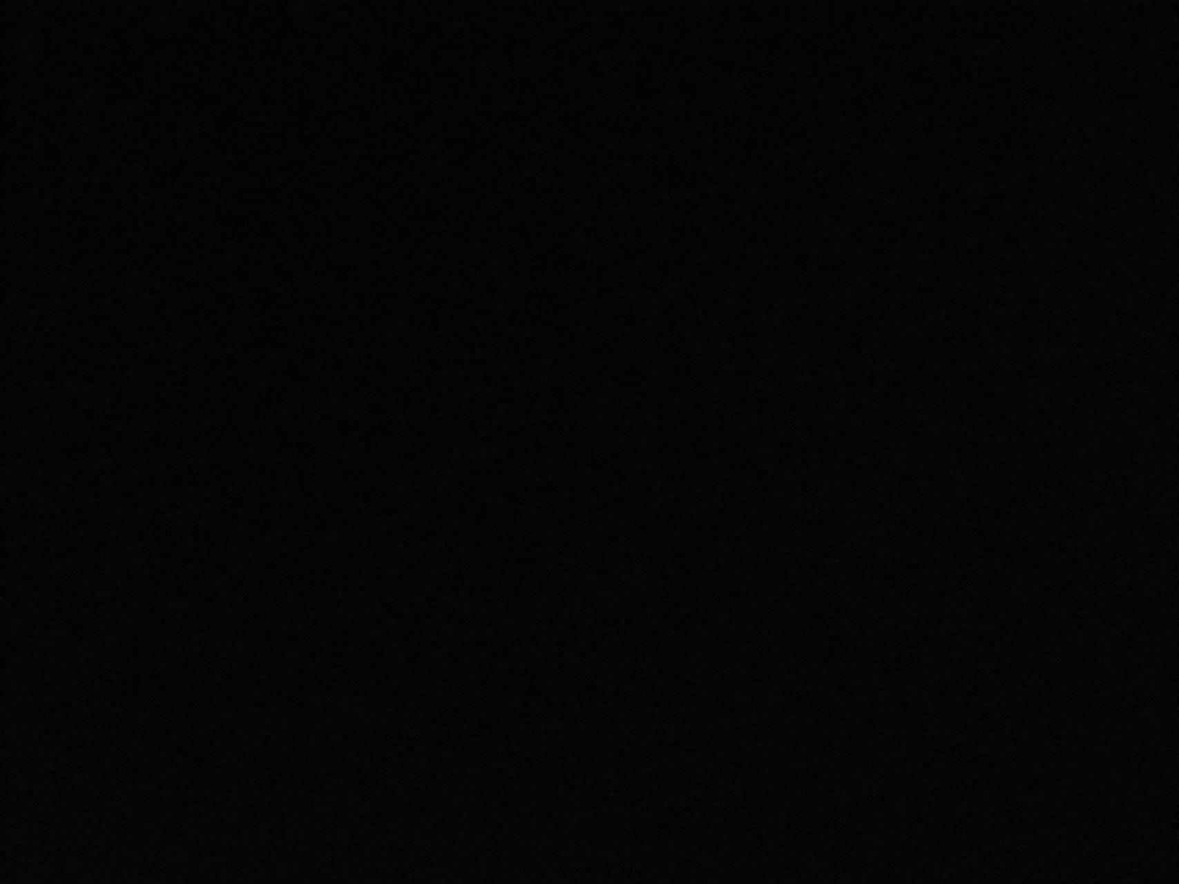 Black Niger