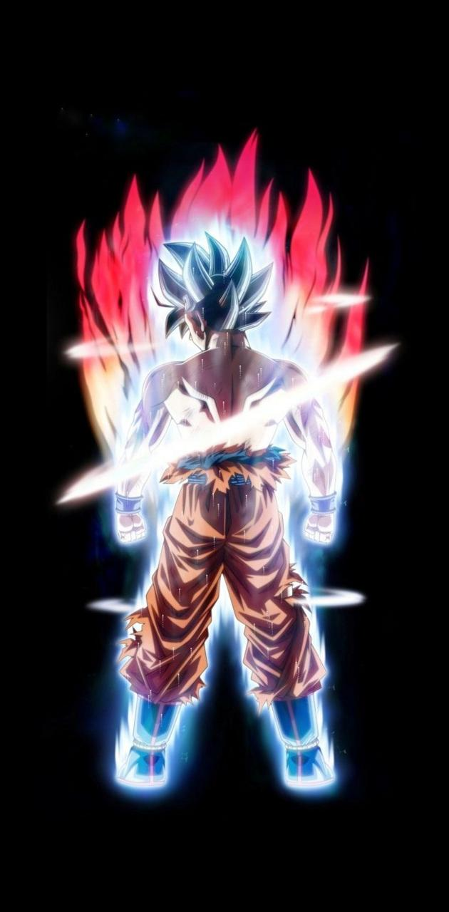 Goku of dragonball