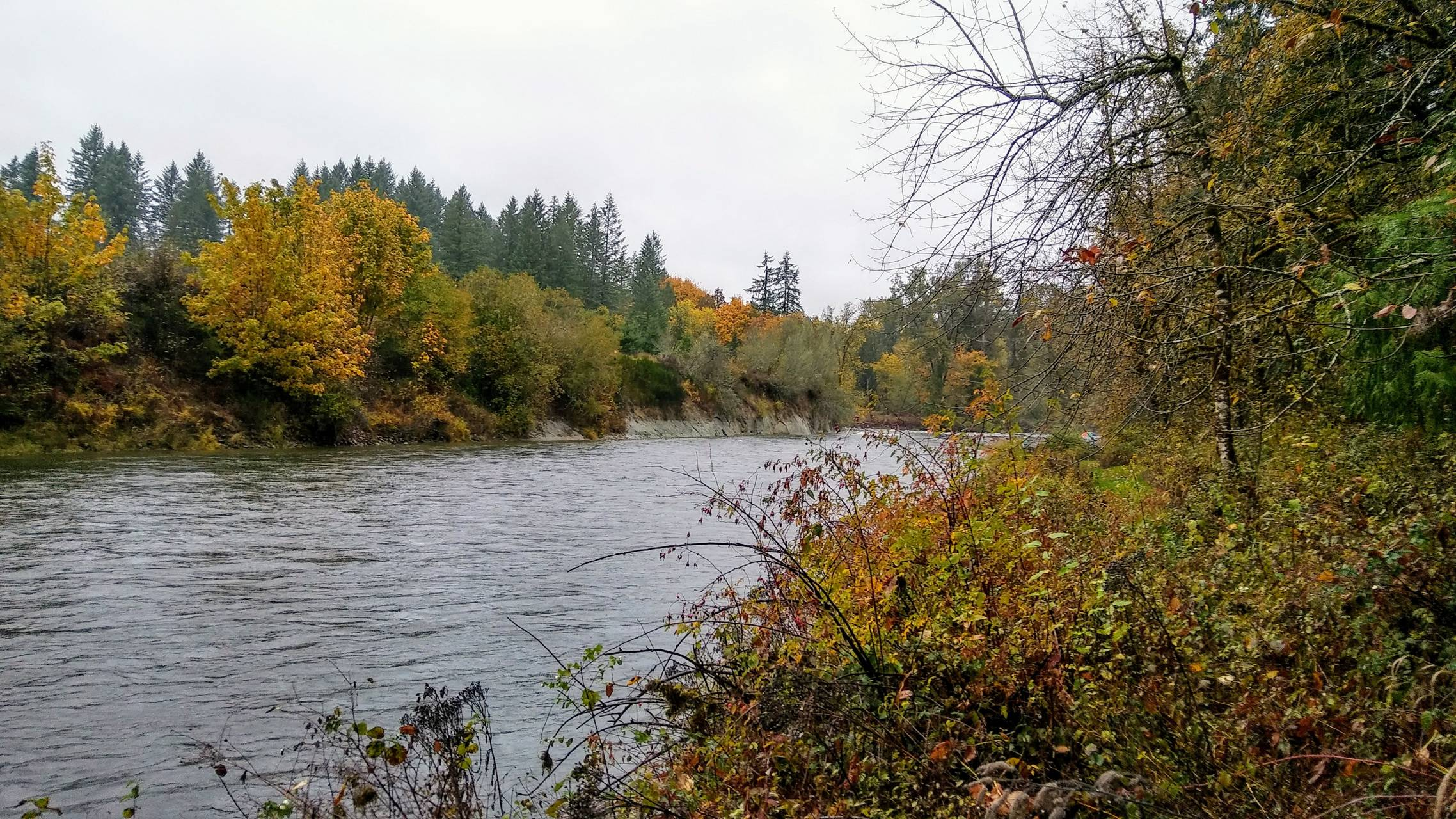 Lewis River East