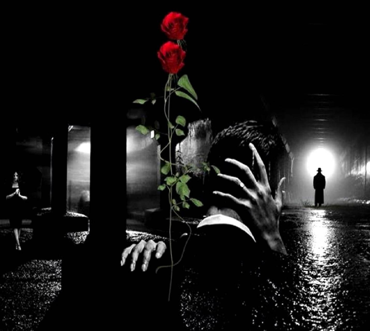 stranger in  night
