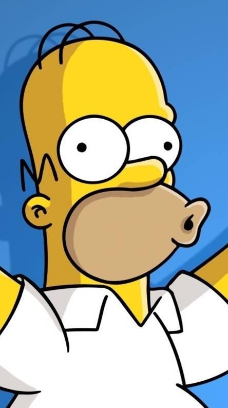 83 Homer Simpson Wallpaper