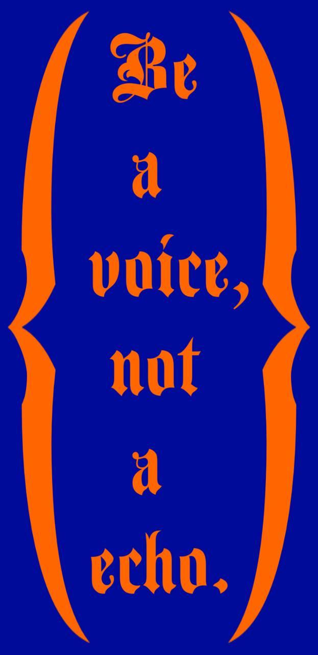 Voiceecho