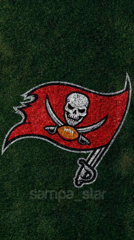 Tampa Bay Rays Buccaneers