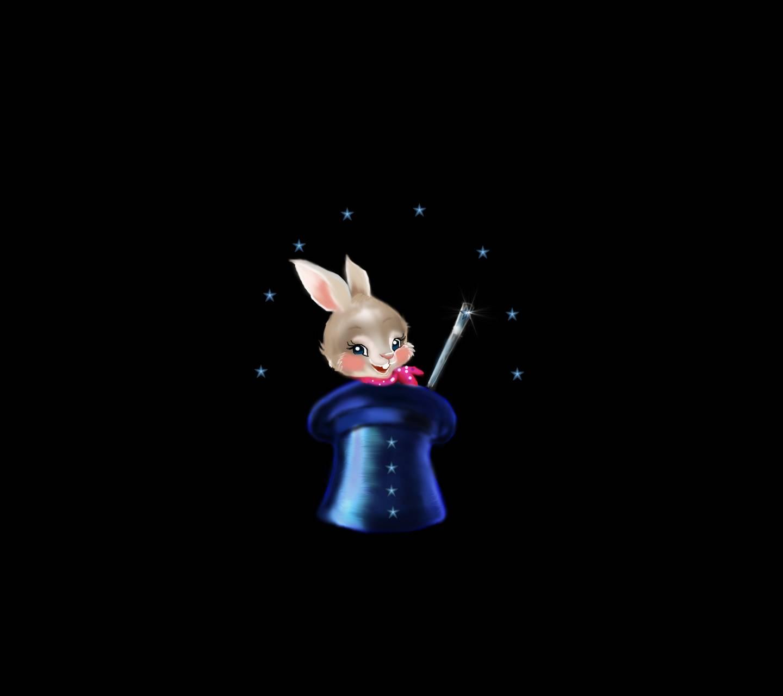 Hat Rabbit