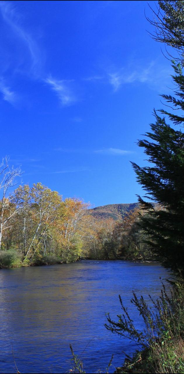 Clinch River in Va