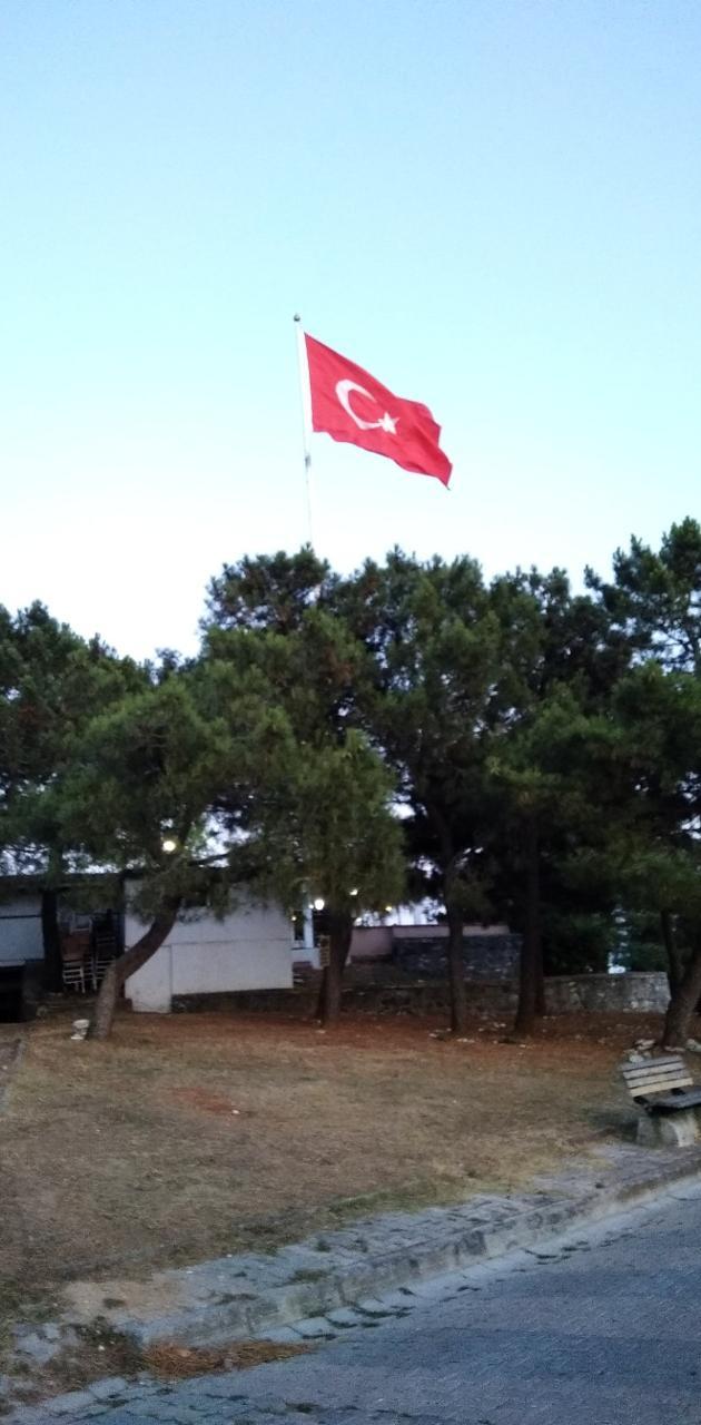 Turkiye turk bayragi